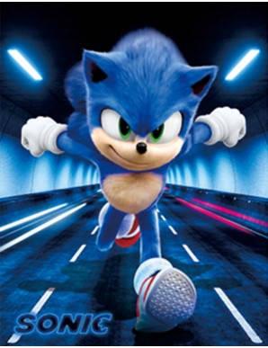 Décor mural encadré - Sonic - Impression 3D -...