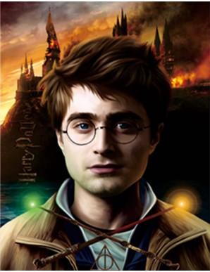 Décor mural encadré - Harry Potter et Voldemort...